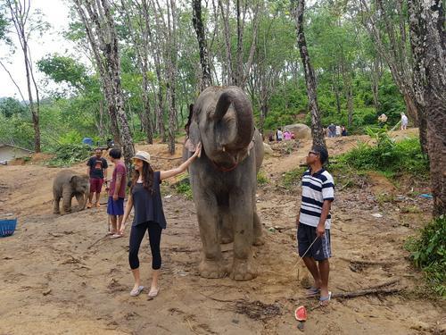 k swiss shoes thailand elephant rides phuket island