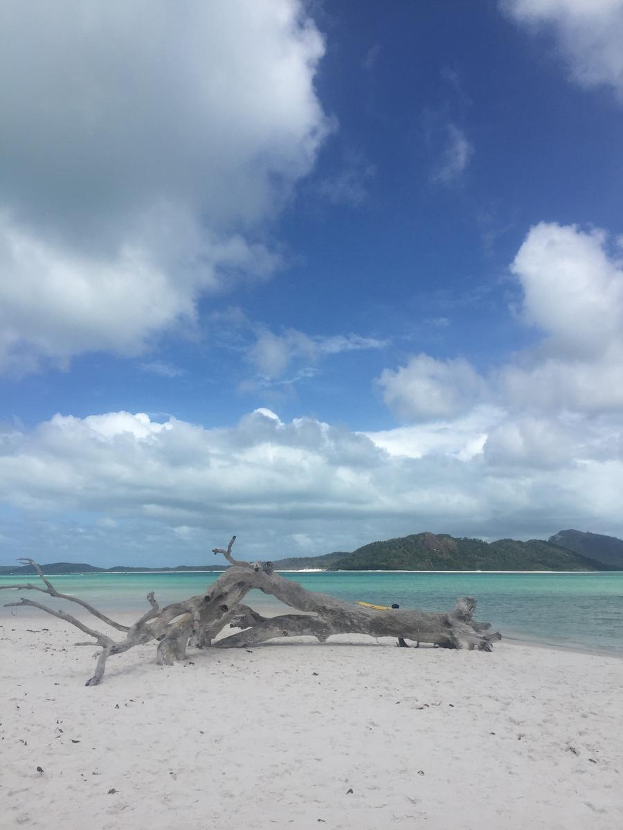 Whitehaven Beach Camira Sailing Full Day Adventure from