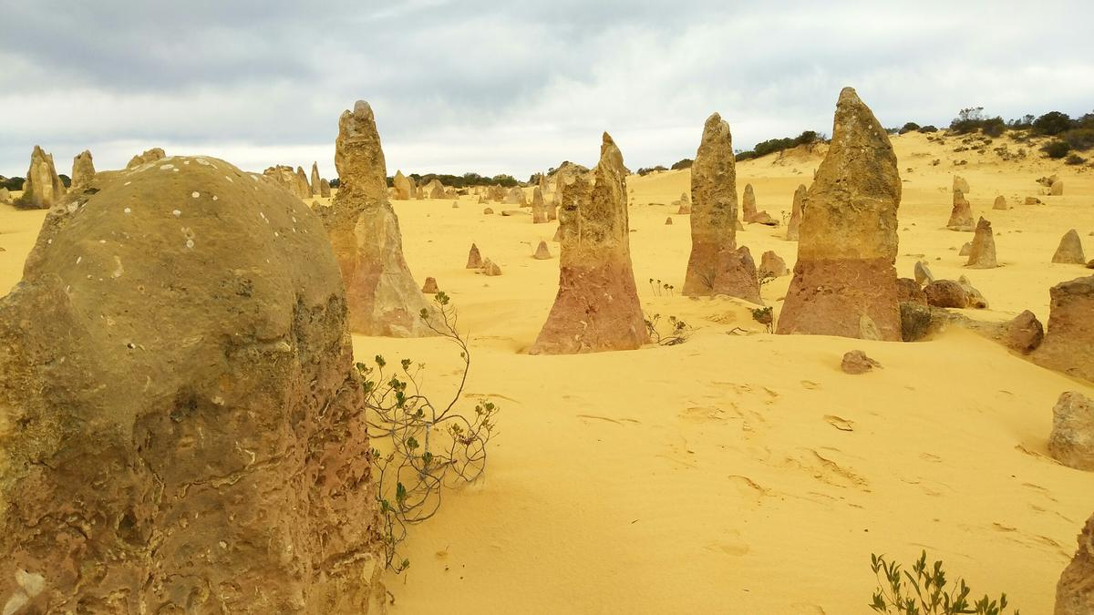 Pinnacles and Lobster Day Tour from Perth - Klook
