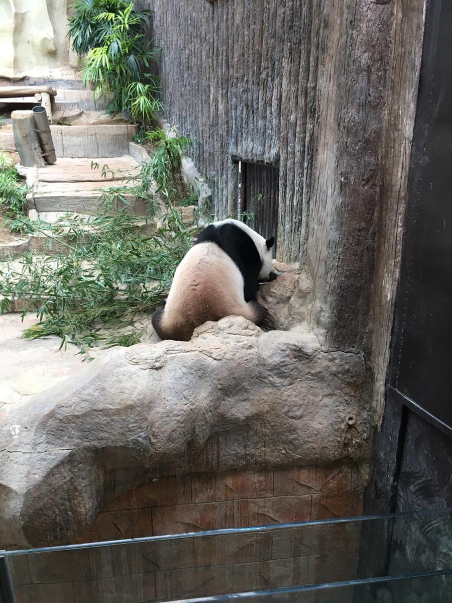 Chiang Mai Zoo Aquarium One Day Pass - Klook